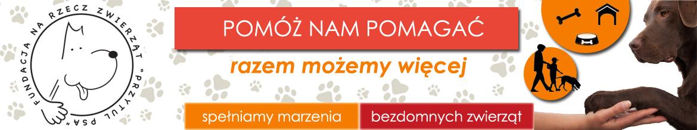 fundacja przytul psa, adopcje psów, adopcje kotów